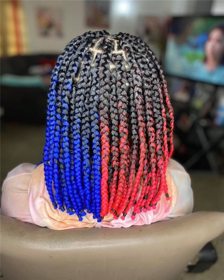 Blue and Red Box Braids